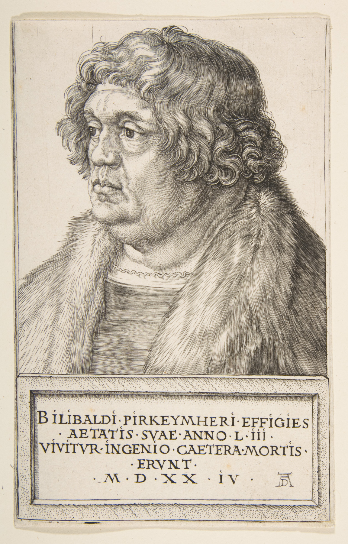 Albrecht Durer. Portrait Of Willibald Of Pirkheimer