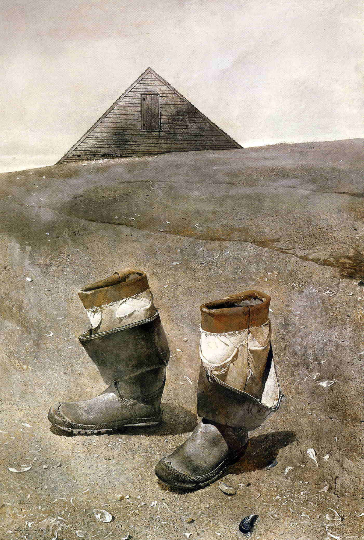 Andrew Wyeth. Marine boots