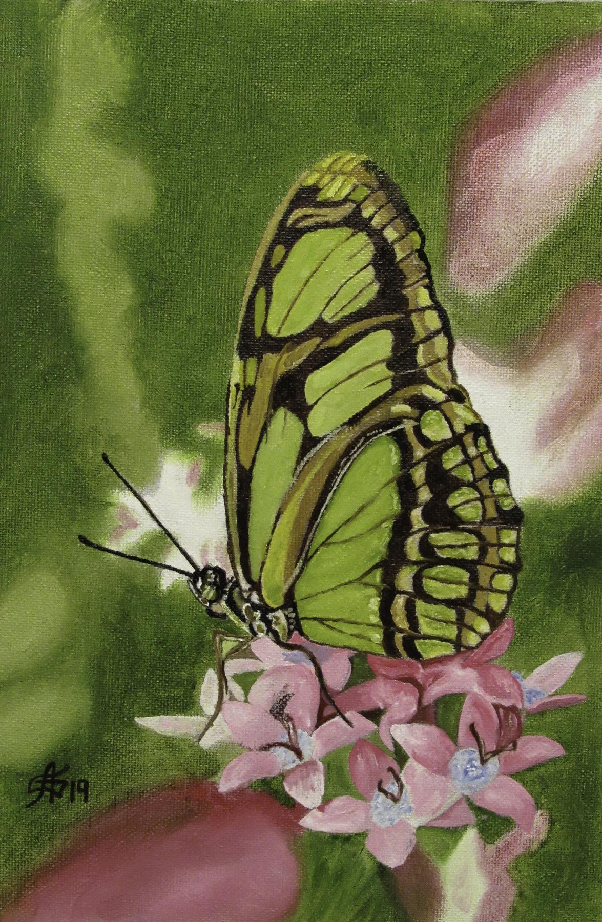 Artashes Vladimirovich Badalyan. Butterflies-2 - x-hardboard-m - 30x20