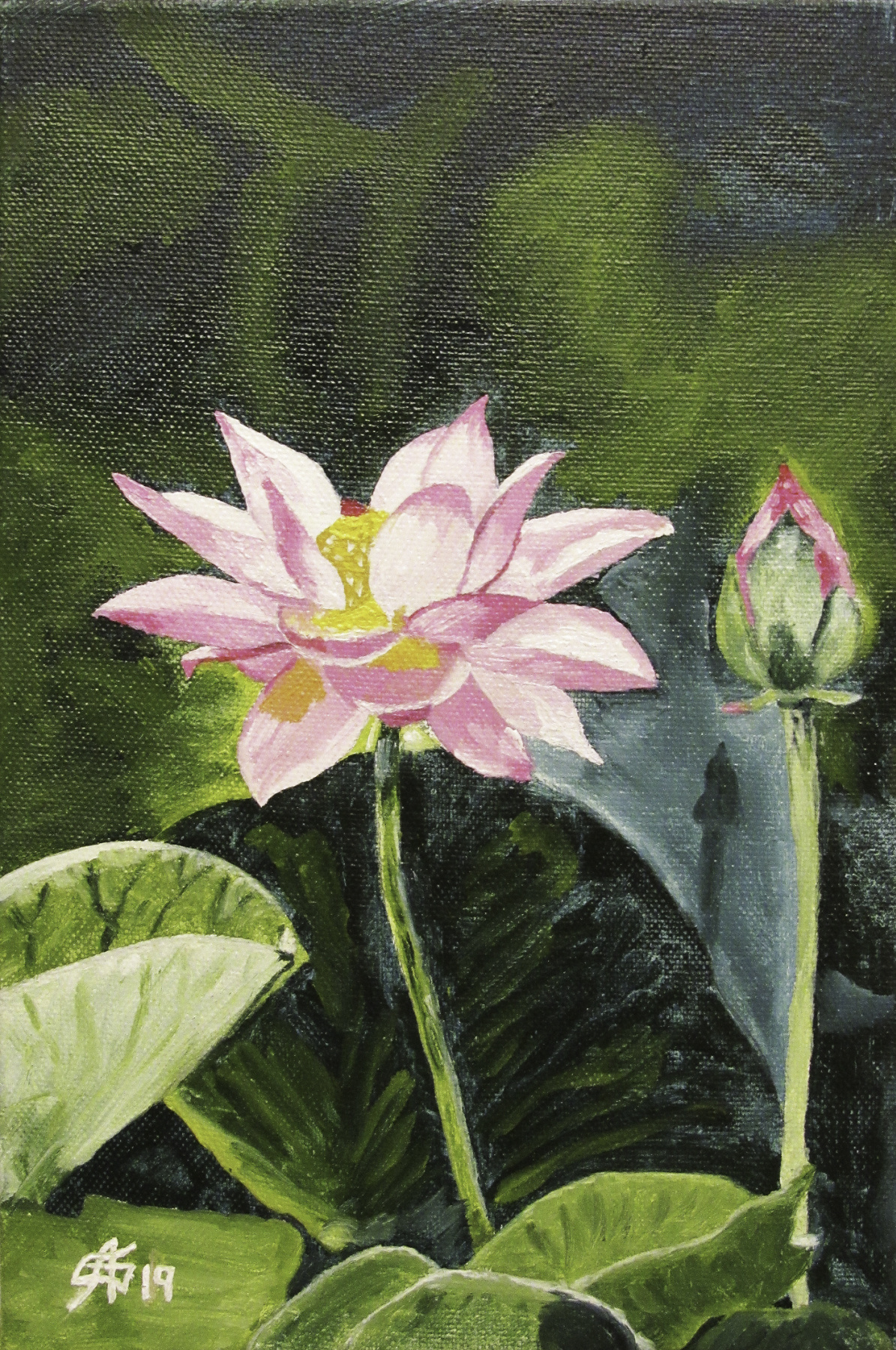 Artashes Badalyan. Lotus - xm - 30x20