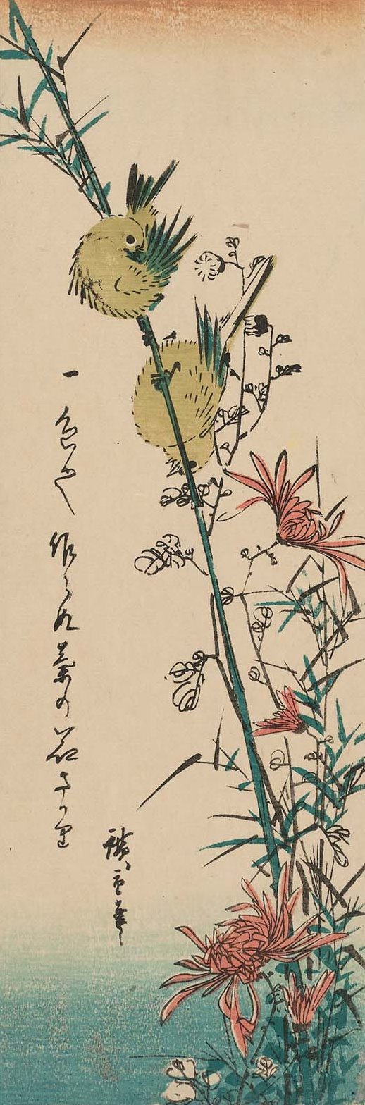 """Utagawa Hiroshige. Pair of Japanese white-eye and wild chrysanthemum. Series """"Birds and flowers"""""""