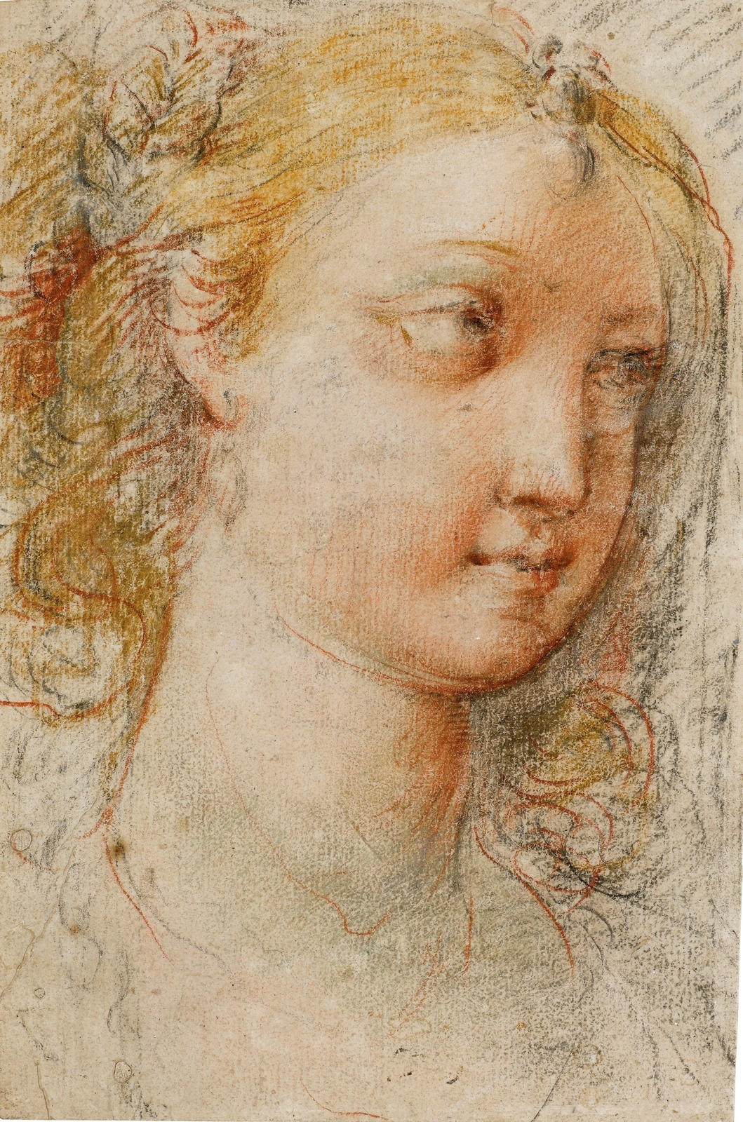 Cesari Giuseppe (Cavalier d'Arpino). Head of a young woman.