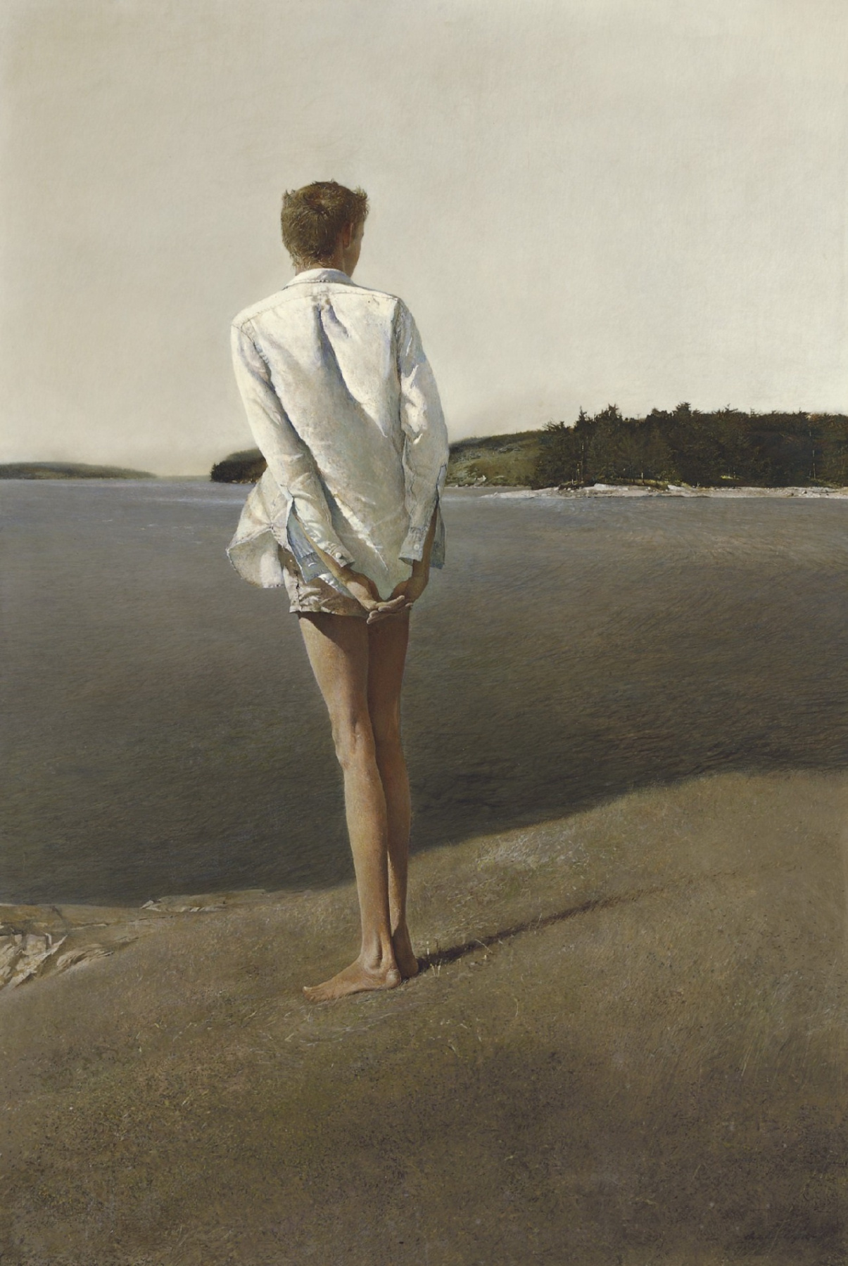 Andrew Wyeth. Over the Strait