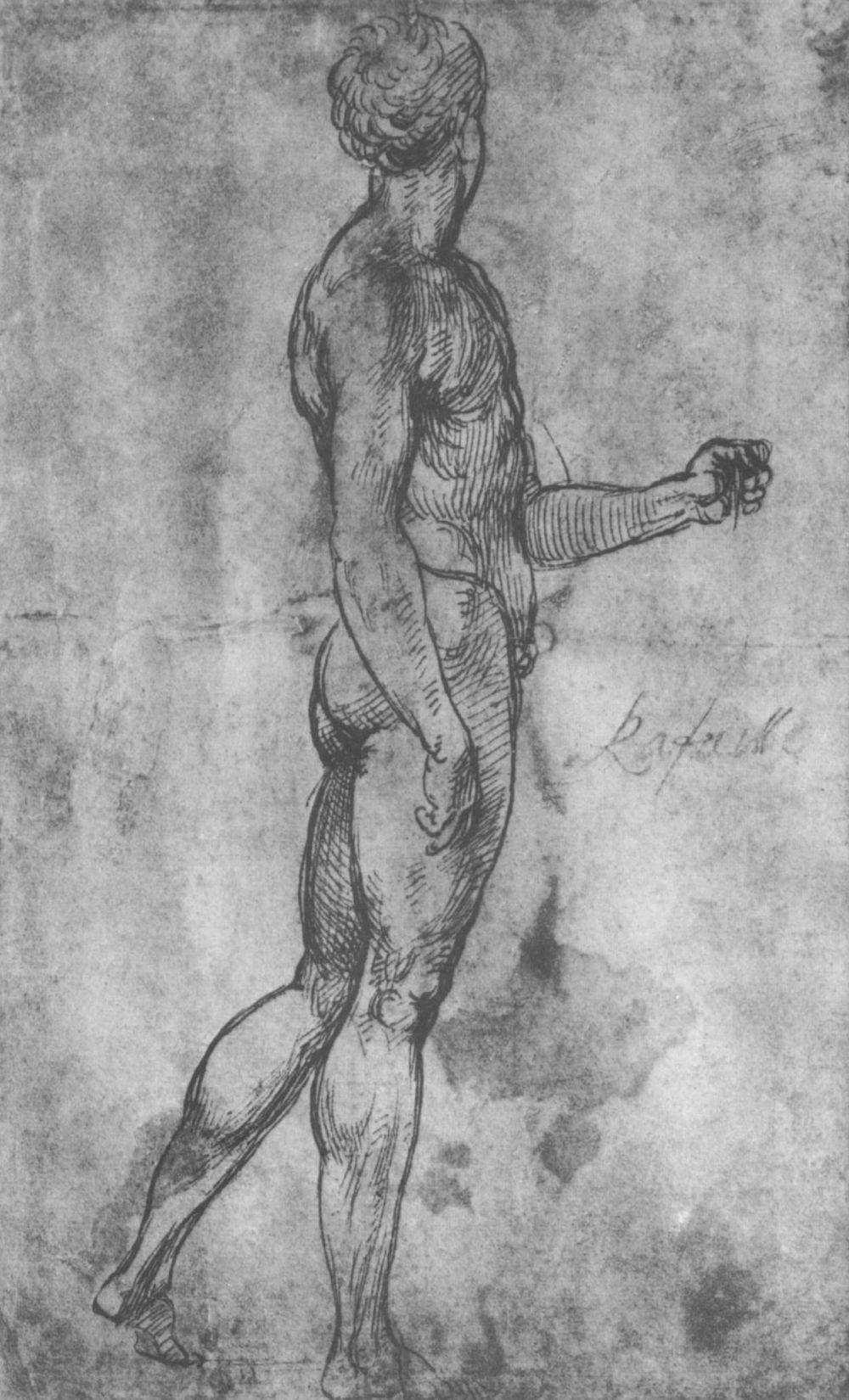 Raphael Sanzio. A naked man
