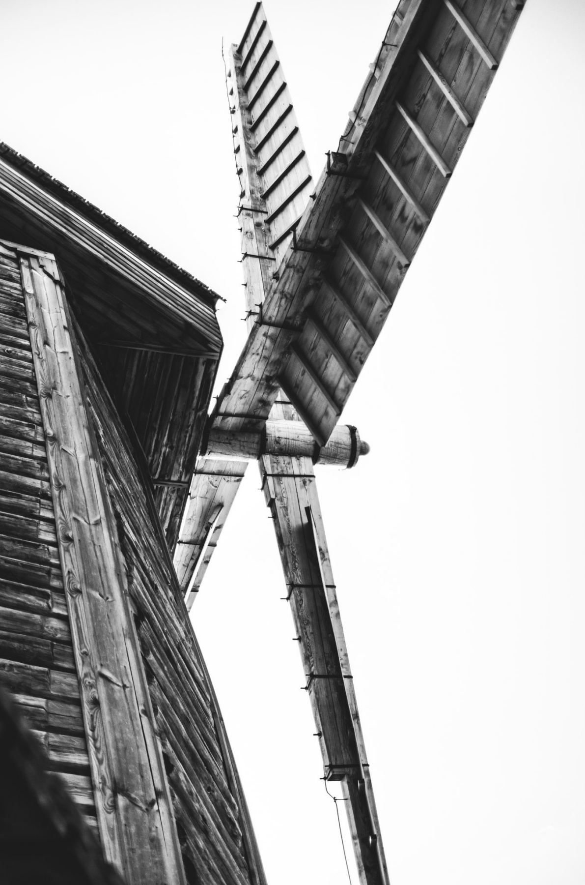 Angelina Vorontsova. Mill