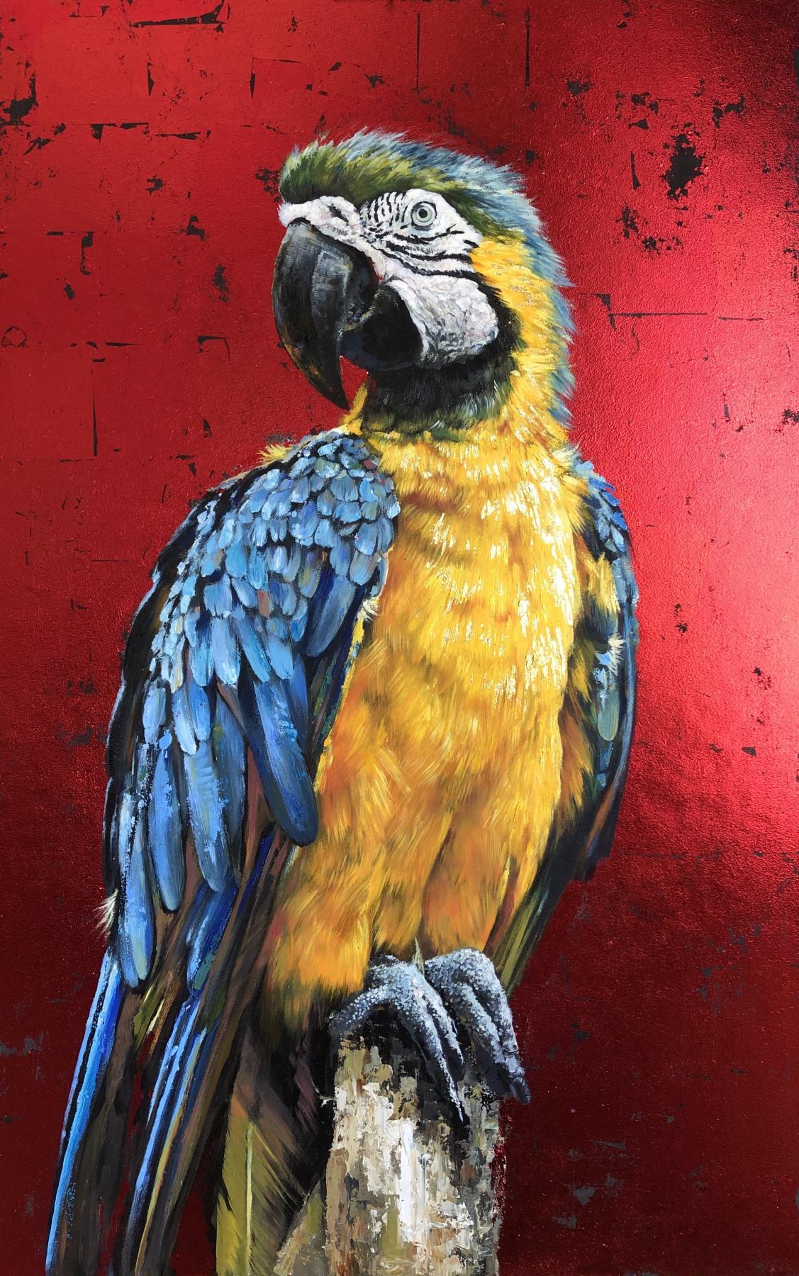Olga Shatskaya. Macaw on red