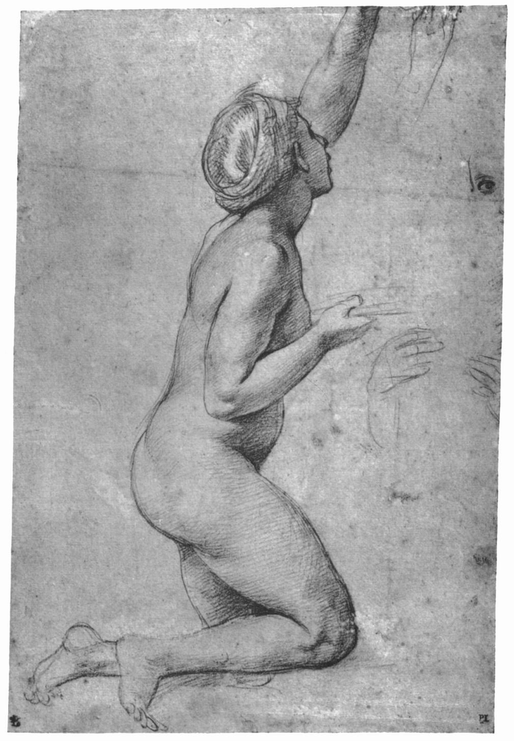 Raphael Santi. Study for the frescoes of the Loggia of psyche. Sketch Nude