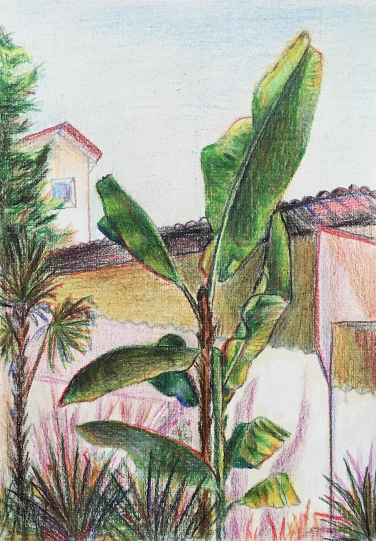 Oksana Gracheva. Banana palm