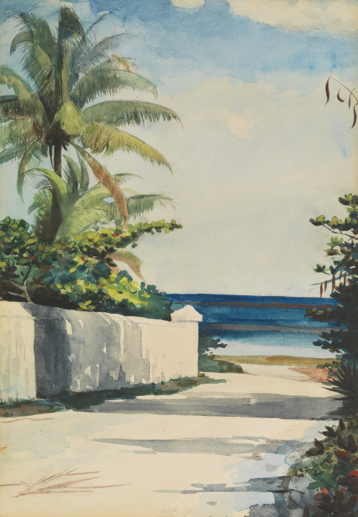 Winslow Homer. Road in Nassau