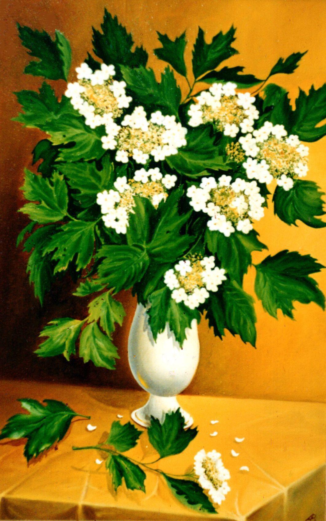 Vladimir Vasilyevich Abaimov. The White Snowball Tree 1