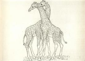 Хуан Сориано. Жирафы