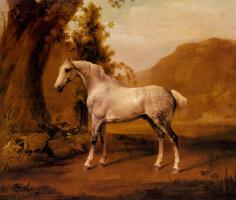 Джордж Стаббс. Пейзаж с серым жеребцом