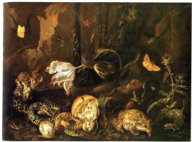 Отто Марсеус ван Скрик. Натюрморт с насекомыми и амфибиями