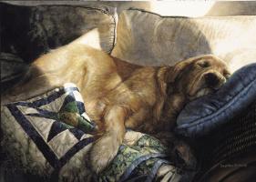 Росс Суилен. Спящий пес