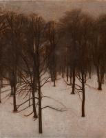 Вильгельм Хаммерсхёй. Парк Сёндермаркен зимой