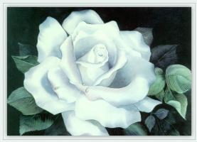 Луиза Джексон. Белая роза