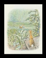 Бенджамин и Кролик Питер Банни. Сказка о кролике Питере 11