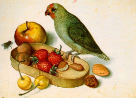 Георг Флегель. Птица