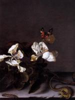 Балтазар ван дер Аст. Бабочка и ветка цветущей яблони (фрагмент)