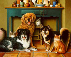 Бралдт Бралдс. Собаки и коты