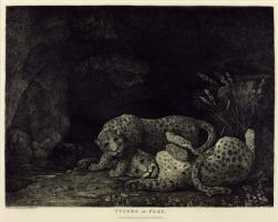 George Stubbs. Game leopards