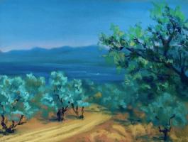 Лариса Луканева. Средиземное море. Оливковая роща.