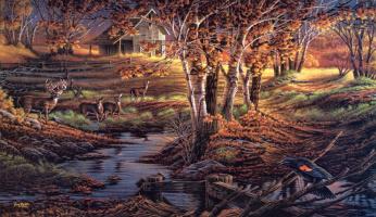 Терри Редлин. Осенний пейзаж