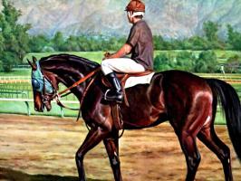 Дональд Шварц. Лошадь 1