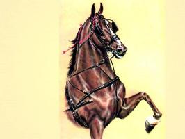 Дональд Шварц. Лошадь 2