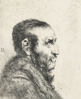 Ян Ливенс. Профиль мужчины с редкой бородкой