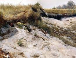 Питер Верстаппен. Природа 11