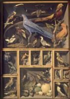 Александр-Исидор Леруа де Бард. Коллекция птиц