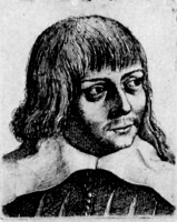Венцель Холлар. Голова молодого человека