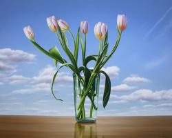 Майкл  Зигмонд. Семь белых тюльпанов