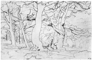 Франц Теобальд Хорни. Лесной пейзаж с большими сучковатыми деревьями