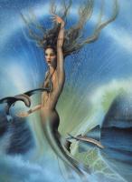 Давид Деламар. Маленькая русалка и летающая рыба