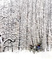 Сьюзан Джефферс. Зимние истории 16