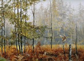 Питер Верстаппен. Природа 68