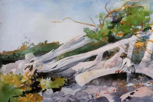 Winslow Homer. Проводник, прячущий каноэ под буреломом