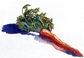 Джеки Морган. Морковь