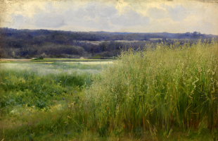 Mikhail Andreevich Bercos. Meadow