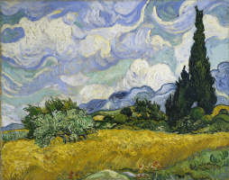 Field with cypresses (option)