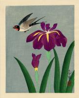 Бакуфу Оно. Птица и цветок