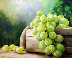 Saveliy Kamsky. Still life with grapes