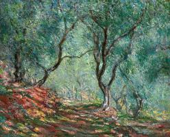Клод Моне. Оливковая роща в саду Морено