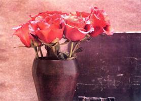 Мария Робледо. Красные розы