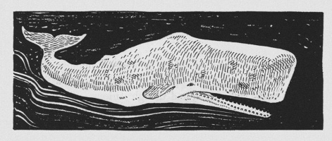 "Illustration to the novel by H. Melville ""Moby dick"""