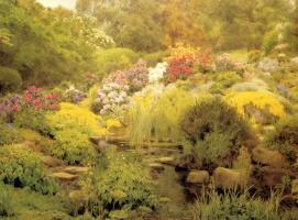 Джордж Маркс. Водный сад