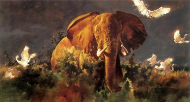 Грегори Манчесс. Слон