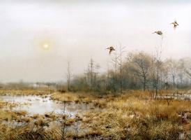 Питер Верстаппен. Природа 51